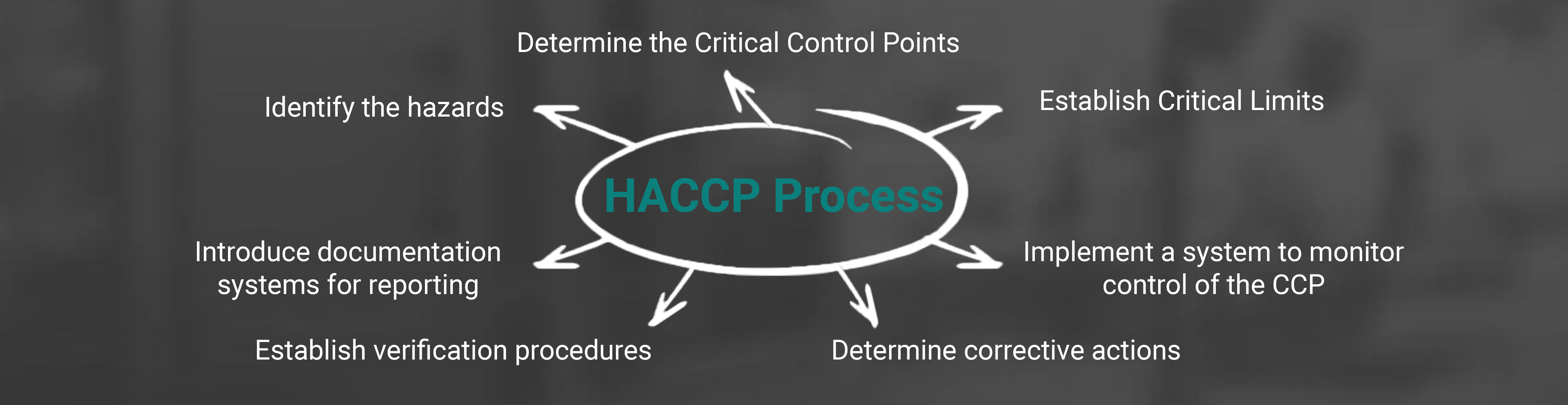 Haccp Plan Template Uk Image collections - Template Design Ideas